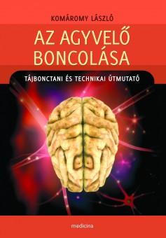 Az agyvelő boncolása