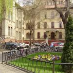 tavasz2011-0020