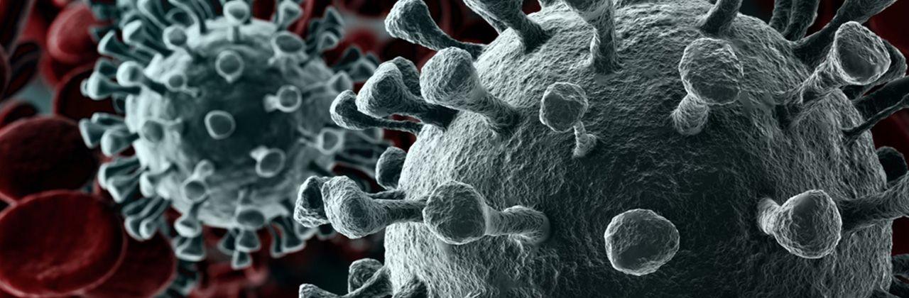 Informationsportal zum neuartigen Coronavirus