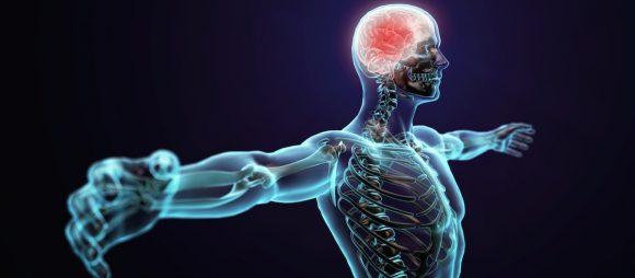 COVID-19 és a neuromuszkuláris betegségek - FONTOS INFORMÁCIÓK!