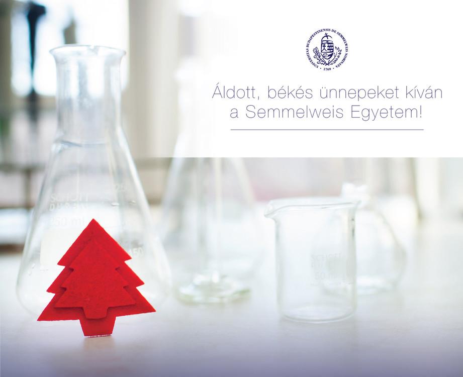 semmelweis-kepeslap-4