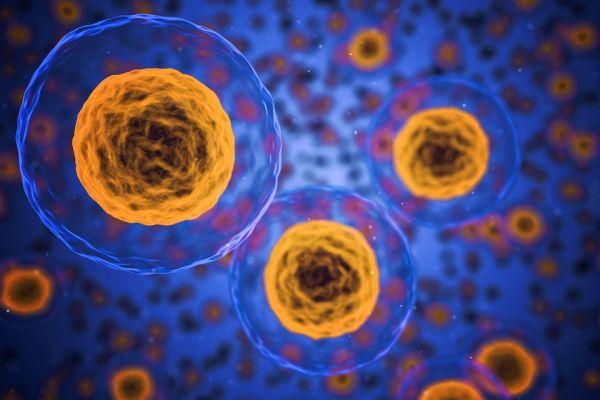 Nehezen ismerhető fel a leggyakoribb örökletes betegség – Semmelweis Hírek