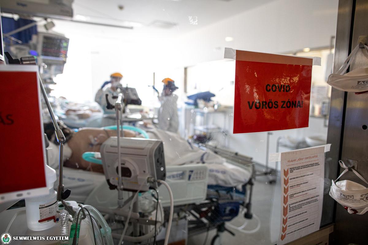 COVID ellátás az Aneszteziológiai és Intenzív Terápiás Klinikán 2021.03. Fotó: Kovács Attila - Semmelweis Egyetem