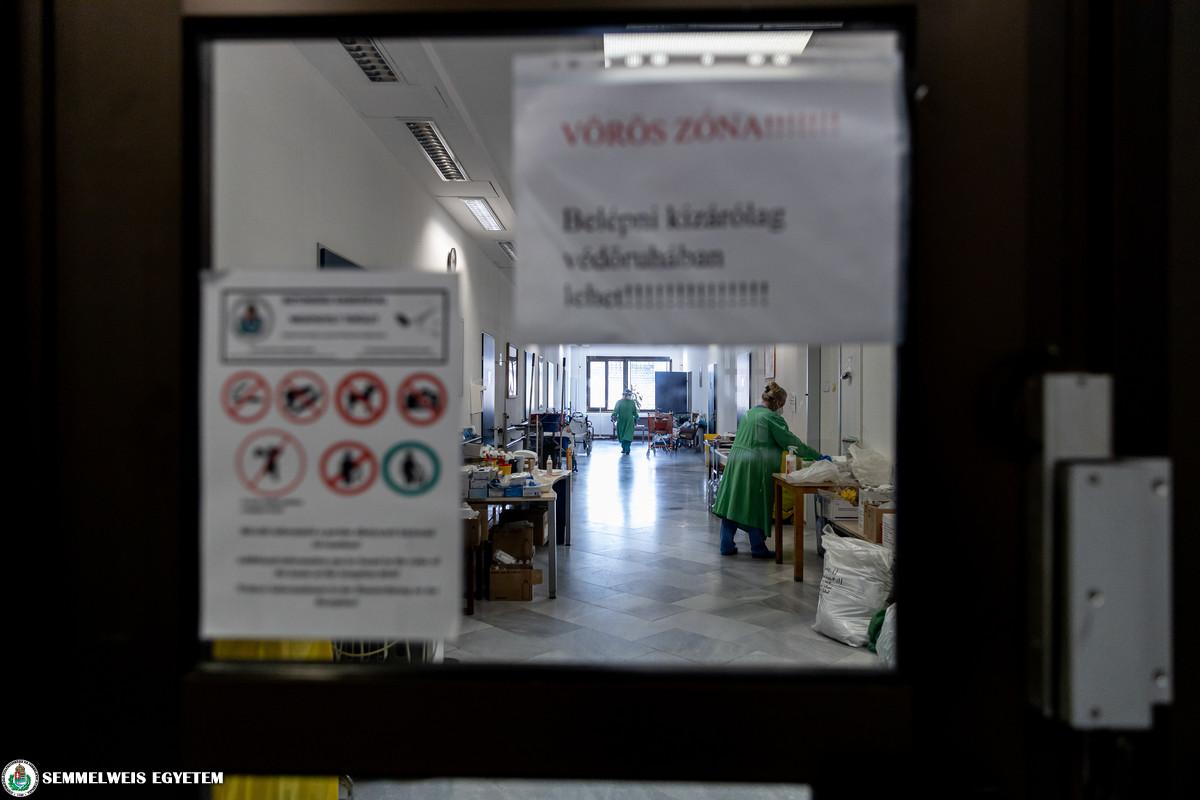 COVID betegellátás a Pszichiátriai és Pszichoterápiás Klinikán 2021.04. Fotó: Kovács Attila - Semmelweis Egyetem