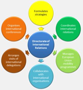 Directorate activities