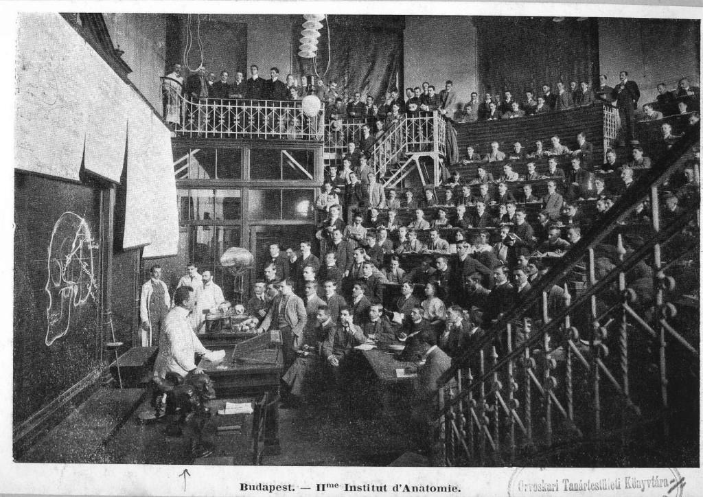 Anatómiai Intézet
